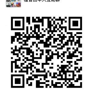 檀香山华人互助微信群